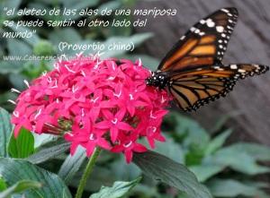 """el aleteo de las alas de una mariposa se puede sentir al otro lado del mundo"""" (proverbio chino)"""