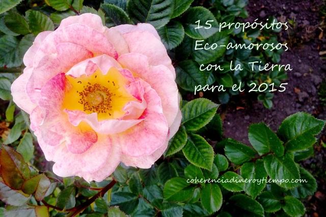 15 propósitos Eco-amorosos con la Tierra para el 2015