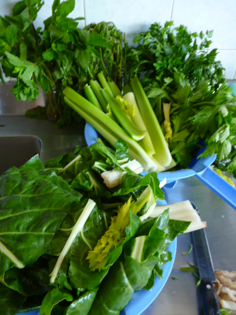 Lavar las frutas y verduras cuando llegues de hacer las compras