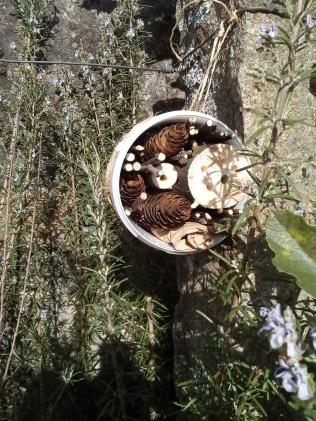 Uno de los refugios para insectos que hicimos, y ya tenemos algunos huéspedes pasando el invierno