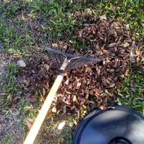 Para la capa seca puedes usar hojas secas del jardín.