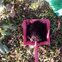 Tierra para agregar a la capa seca del Compost