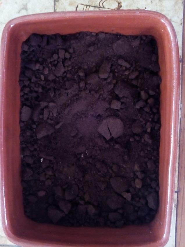 Restos de Café que dejó secar al sol para agregar al Compost