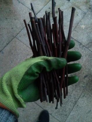 Palitos que usamos en el techo del pesebre