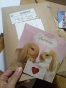 El cartón y la tarjeta que use